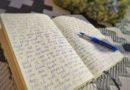 Het grote dagboek van Ellen en Pepijn
